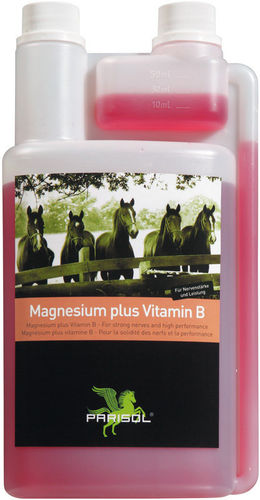 Parisol Magnesium plus Vitamin B 1000 ml