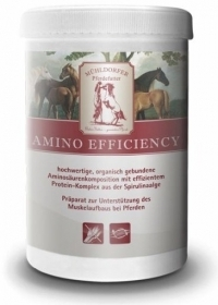 Mühldorfer Amino Efficiency 750 gr./3 kg