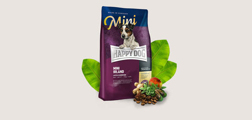 Happy Dog Supreme Irland Mini