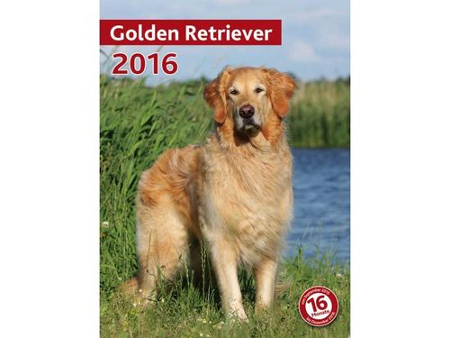 Kalender Golden Retriever 2018