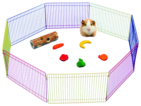Exercise Play Pen für Nager